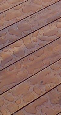 Maderas resistentes al agua